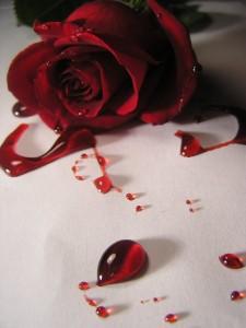 Du sang et des larmes